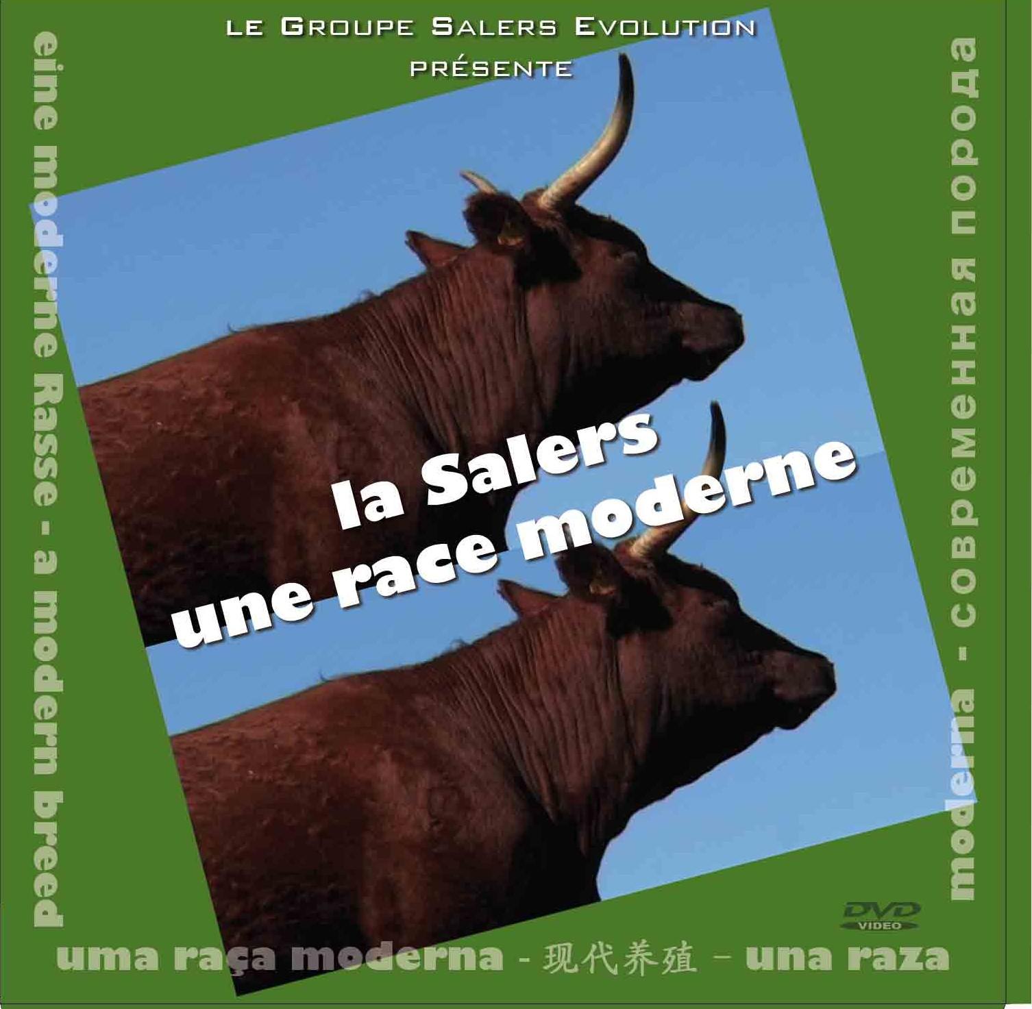 "DVD ""La Salers une race moderne"""