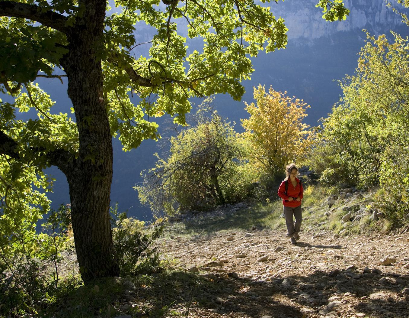 Guide de randonnée pédestre