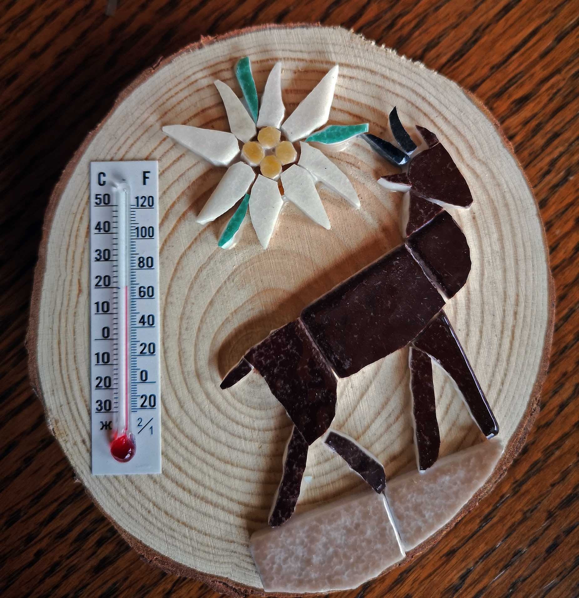 magnet thermomêtre